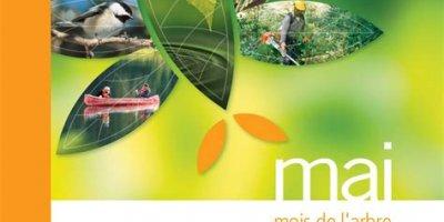 Mai - mois de l'arbre et des forêts